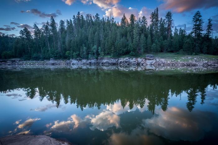 Waters Edge Hort_IR.jpg