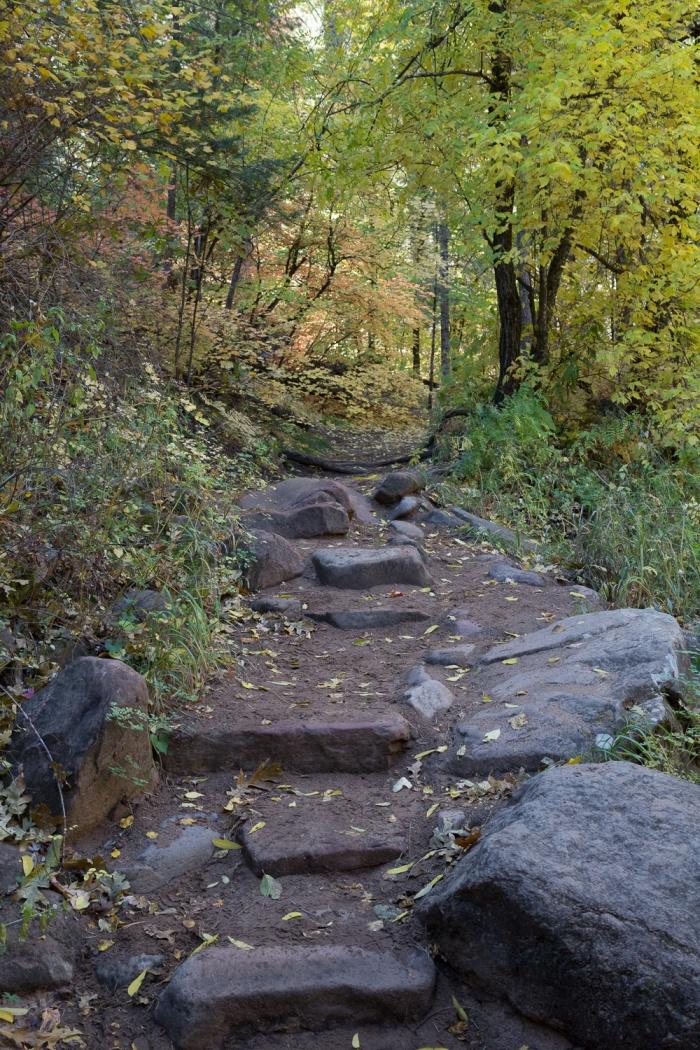 rocktrail step_IR.jpg