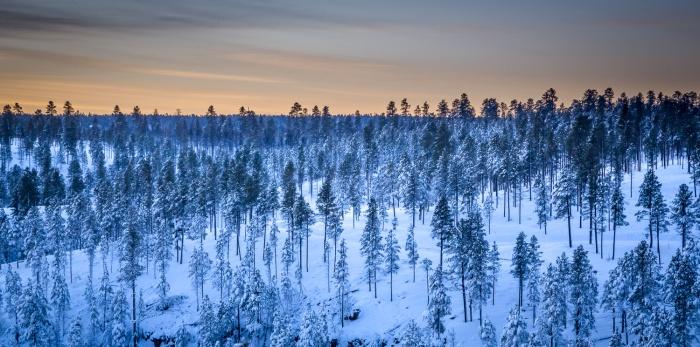 Moqui Snow_IR.jpg