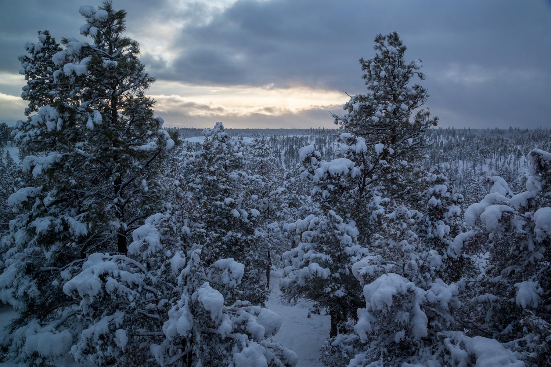 Snowcover_IR.jpg