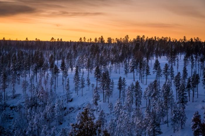 Sunrise Snow_IR.jpg